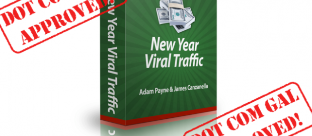 new year viral traffic review